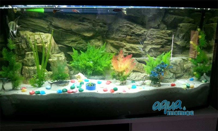aquarium background for juwel aquarium rio 400 3d. Black Bedroom Furniture Sets. Home Design Ideas