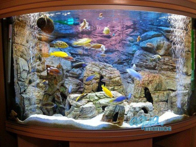 Aquarium background for juwel aquarium trigon 190 3d for 3d fish tank
