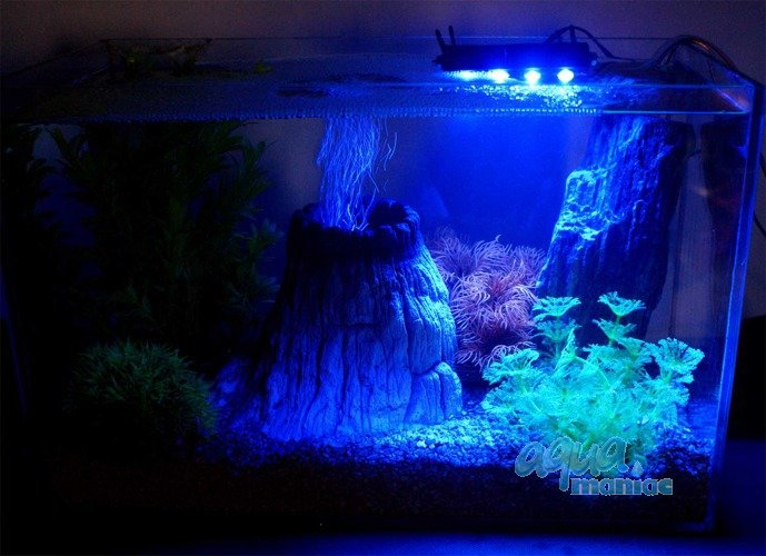 aquarium blue led lights waterproof. Black Bedroom Furniture Sets. Home Design Ideas