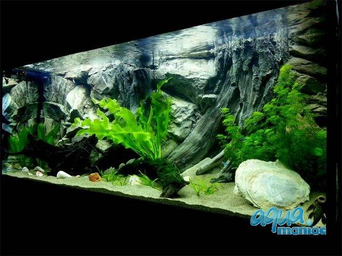 JUWEL Vision 180 3D amazon background 90x45cm in 2 sections