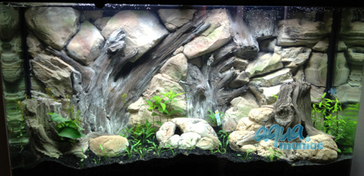 JUWEL Vision 260 3D amazon background 117x54cm in 2 sections