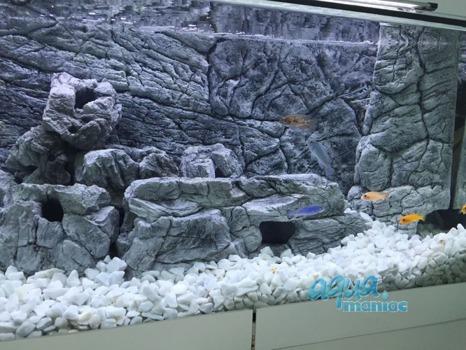 Long grey aquarium rock