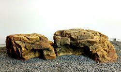 Aquarium Terrarium medium and small ledge - bundle of 2
