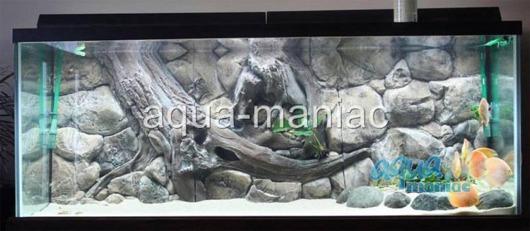3D amazon background 196x54cm