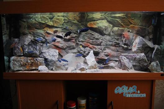 3D beige rock background 117x54cm