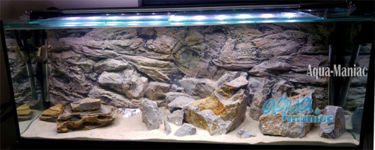 3D beige rock background 146x54cm
