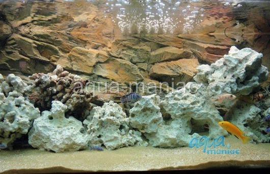 3D beige rock background 97x45cm