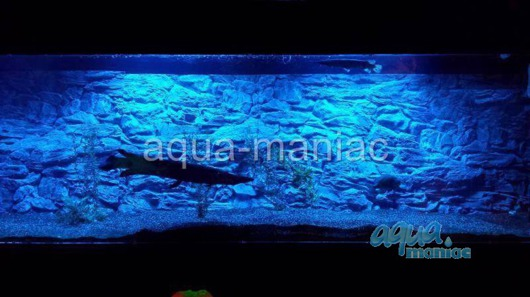 3D grey rock background 148x56cm in 2 sections