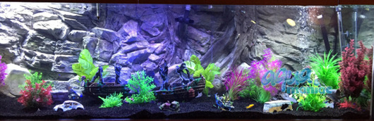 3D root background 146x45cm
