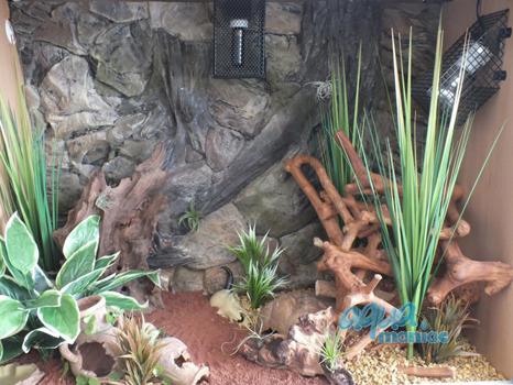 Aquarium Background 3d Root Background For Tropical Fish Tanks