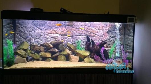 3D thin rock background 97x54cm
