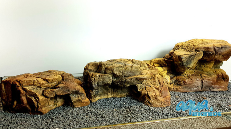 Aquarium Terrarium  ledge medium