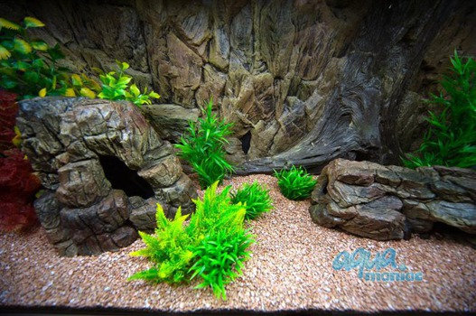 Bundle of large and long  beige aquarium rocks