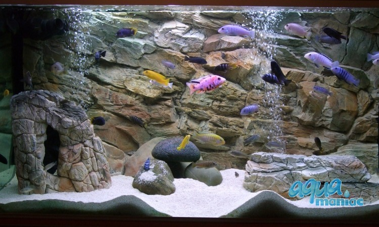 Fluval Roma 200 rock background 97x45cm 2 sections