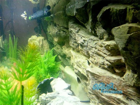 Fluval Roma 240 rock background 117x45cm 2 sections