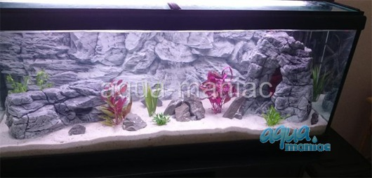 Fluval Vicenza 180 grey rock background 88x46cm 2 sections