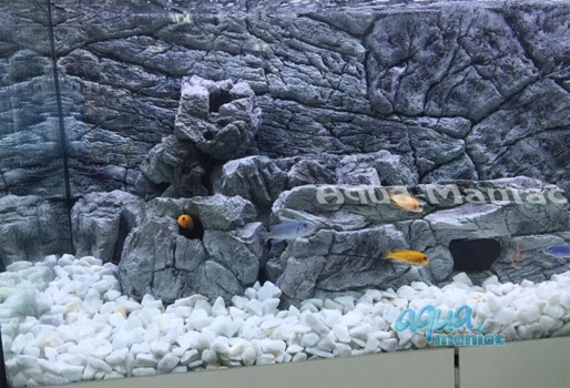 JUWEL Vision 260 3D thin grey rock background 117x54cm in 2 sections