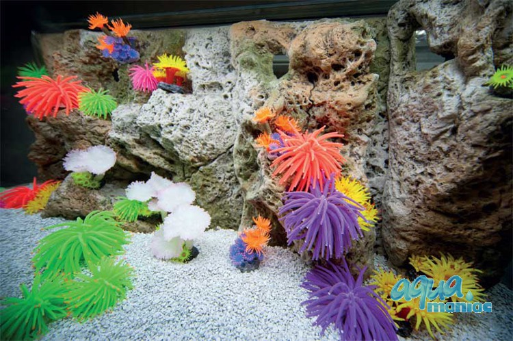 Modules of Limestone Background with corals to fit 180x60cm aquarium