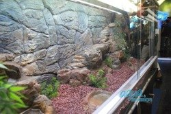 3D thin rock background 117x45cm